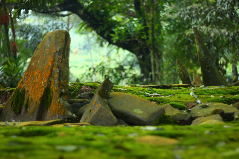 Salah Satu Menhir Megalitik Situs Cibalay
